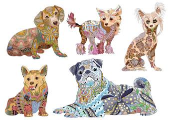 Zentangle stylized dogs. Hand drawn decorative vector illustration