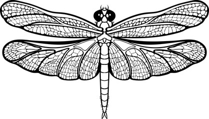 isolated images of a dragonfly.