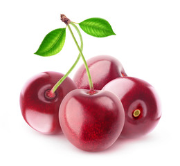 Isolated cherries. Four sweet cherry fruits isolated on white background with clipping path