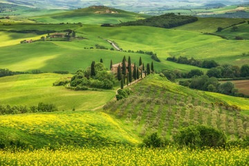 Fotomurales - Tuscany spring, Landscape, Italy