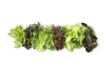 Fresh Vegetables Salad Organic Green Mix on White Background