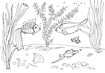 Contour drawing of the aquarium with decorative fishes for coloring
