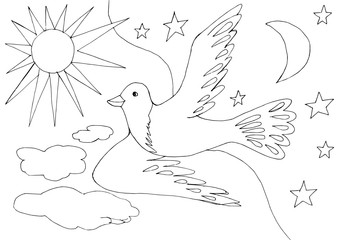Contour drawing of a flying dove in a day and night