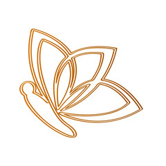 Isolated butterfly outline