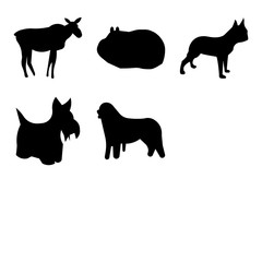 Set Of 9 simple editable icons such as backflip, bernese mountain dog, scottie dog