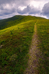 path through mountain ridge on an overcast day. lovely scenery of Runa mountain, Ukraine