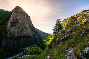 road in Canyon of Trascau mountains in the morning. lovely scenery of Carpathian landscape in springtime. beautiful travel destination. location Cheile Valisoarei, Romania
