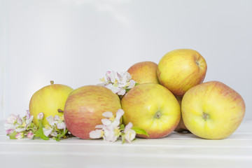 apple flowers and ripe apples on a white wooden background.