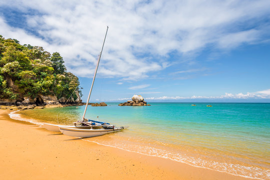 Abel Tasman National Park, New Zealand: Magical sandy beach with turquoise blue water on beautiful sunny summer day, enjoy breathtaking landscape by exploring the Splitt Apple ocean coast by kayaking