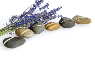 A line  of stones with a bunch of lavender pink orchid on white background