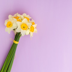 White daffodil bouquet on violet pastel background with copy space.