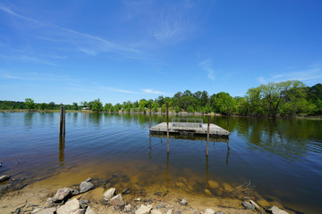 Freshwater Environment - Late Spring