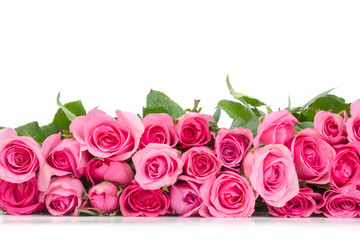 border of Beautiful fresh sweet pink rose for love romantic valentine or a wedding background