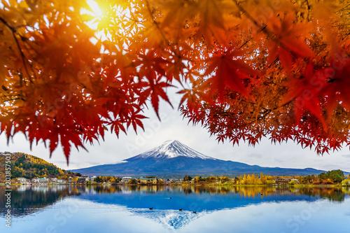 Wall mural Autumn Season and Fuji mountain at Kawaguchiko lake, Japan.
