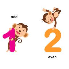 Opposite odd and even vector illustration
