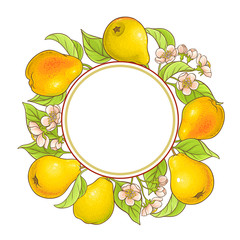 pear branches frame