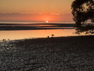 Nudgee Beach Dawn