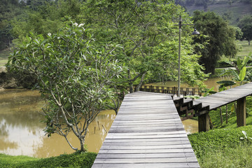 Wooden walkway to tropical garden