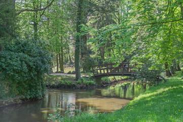 Rzeka wiosną w parku.