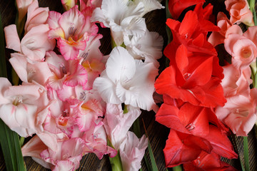 Bunch of colorful rose, white and red gladiolus flowers on a wooden background