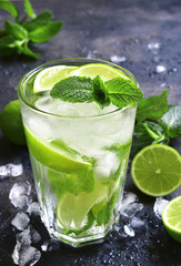 Cold summer drink mojito in a tall glass.