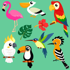 Set of bright exotic tropical birds