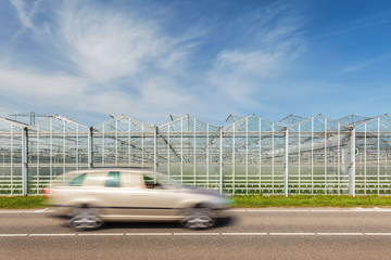 Dutch greenhouse with passing car