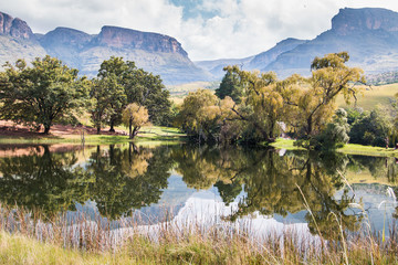Acrylic Prints Reflection Northern Drakensberg mountains reflecting in water with trees and cloudy skies in the Royal Natal National Park, South Africa.