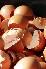 crushed egg shells, realistic nature broken, damage on easter eggshells, backgrounds, biological junk waste from restaurant