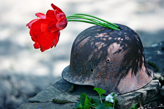 Military helmet of the Second World War with red tulips