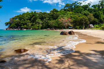 A beautiful, deserted tropical sandy beach surrounded by greenery