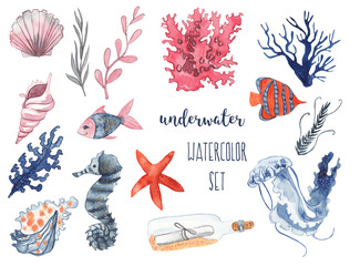 Underwater watercolor set. Seashells, corals, sea star, fish, jellyfish, seahorse and seaweed. Watercolor illustration on white watercolor background