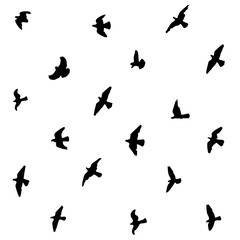 flying pigeons silhouettes seamless black and white background