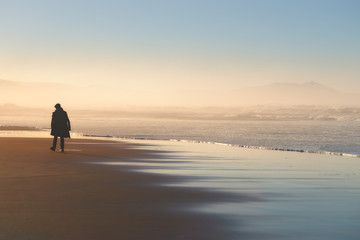 Wall Murals Beach lonely person walking on beach at sunset