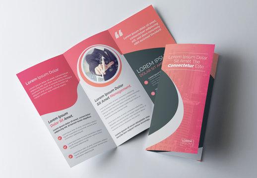 Pink Gradient Tri-fold Brochure Layout