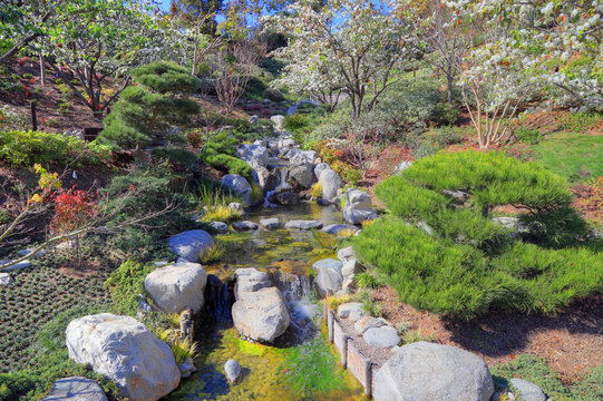 San Diego, California, USA - February 9, 2018:  Japanese Friendship Garden at the Balboa Park located in San Diego..