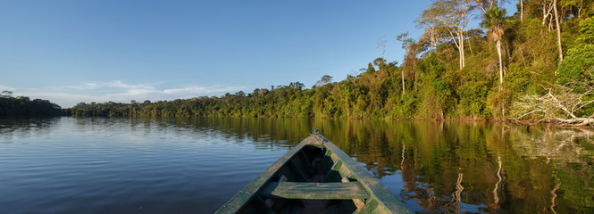 Canoe in the amazon forest, Peru.