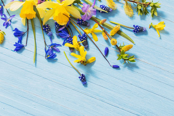 yellow and blue spring flowers on wooden background