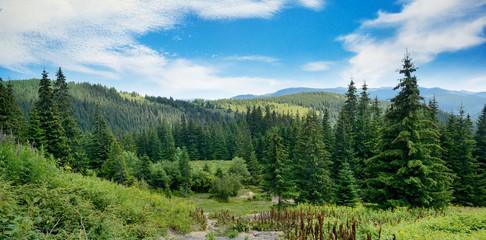 Picturesque landscape in Carpathians.