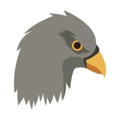 Eagle head cartoon vector illustration graphic design
