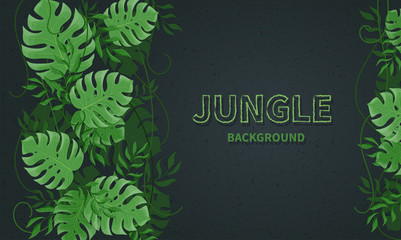 Tropical jungle leaves. Green tropic palm and monstera leaves, lianas on the black background. Vector background banner