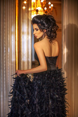 Beautiful girl in black dress in the Palace