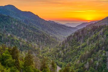 Fototapete - Newfound Gap Smoky Mountains