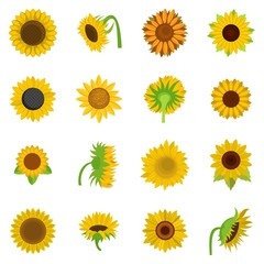 Sunflower blossom icons set. Flat illustration of 16 sunflower blossom vector icons isolated on white