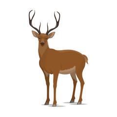 Deer vector animal flat icon