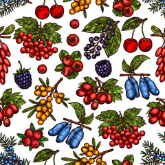 Vector garden and forest berries sketch pattern