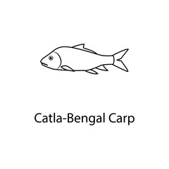 castka bengal carp icon. Element of marine life for mobile concept and web apps. Thin line castka bengal carp icon can be used for web and mobile. Premium icon