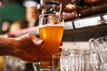 The bartender pours fresh light lager