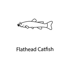 flathead catfish icon. Element of marine life for mobile concept and web apps. Thin line flathead catfish icon can be used for web and mobile. Premium icon