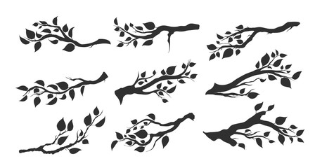 tree branches with leaves isolated